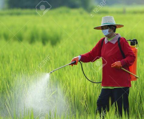 कृषि भूमि पर मकान बनाने और नक्शा पास कराने के लिए बार बार तहसील जाने की जरूरत नहीं होगी